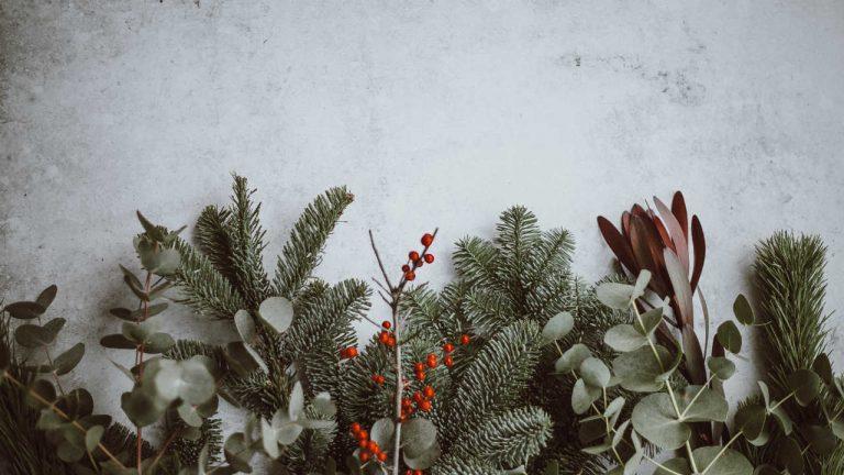kerstbladeren